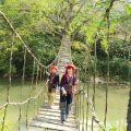 Rattan Bridge Sapa